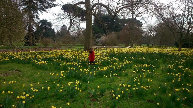 Gorgeous Kew gardens in March
